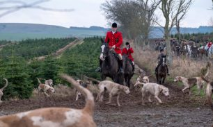 Ancrum, Rawflat /, UK. 13th January, 2018. Buccleuch Foxhounds at Rawflat, near Ancrum Caption: Huntsman Tim Allen (2014 - )(front red jacket) with the Duke of Buccleuch's Hunt Foxhounds on Saturday 13th January in the hills near to Ancrum, Jedburgh, a tu