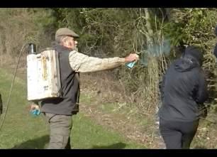 assault-with-spray-882356