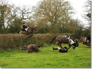 cruelty-horse-fall-at-hedge-33378