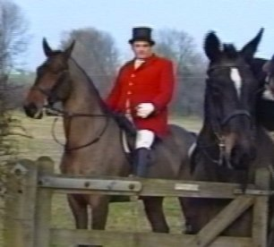 cruelty-horse-fat-hunter-8822