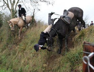 cruelty-horse-jumping-ditch-22876