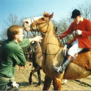 cruelty-horse-pulling-mouth-88235