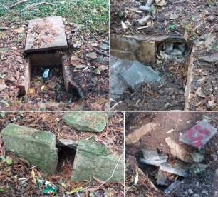 dens-and-setts-87773