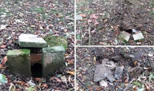 dens-and-setts-888833