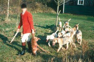 fox-kill-88372