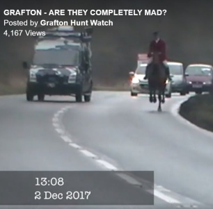 grafton-cantering-on-road-7744