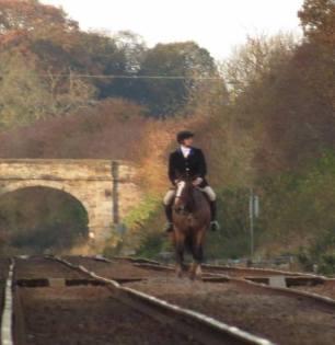 horse-and-rider-on-railwayline-992745