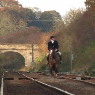 horse-and-rider-on-railwayline-992745