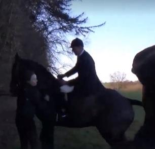 horse-ram