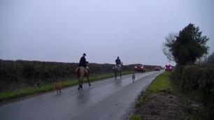 hounds-and-horse-on-roads-992745