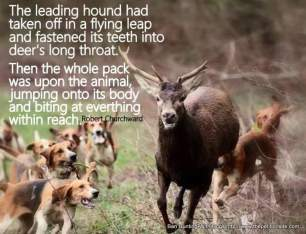 hounds-chasing-deer