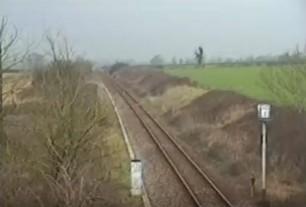 hounds-on-railwayline-22456