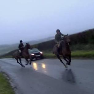 hunt-horses-galloping-on-road-11334