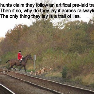 hunt-on-railwayline-88234