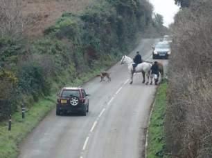 hunts-on-roads-18299