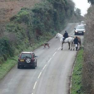 hunts-on-roads-18299