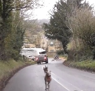 hunts-on-roads-9933745