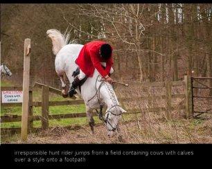 jumping-onto-footpath-88234
