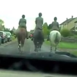 reckless use of horses