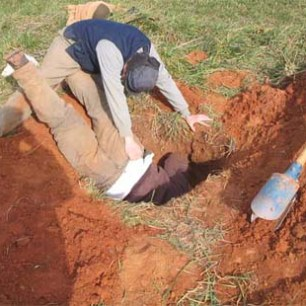 terriermen-digging-777234