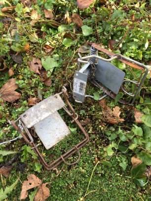 traps-22945