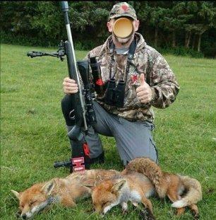 trophy-hunter-fox-882635
