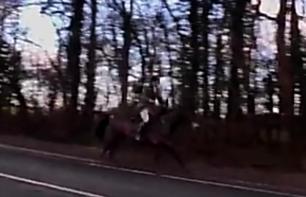 warwichshire-hunt-07-03-2018-galloping-on-road