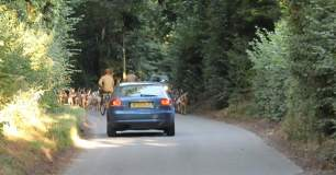 hounds-on-roads-33778