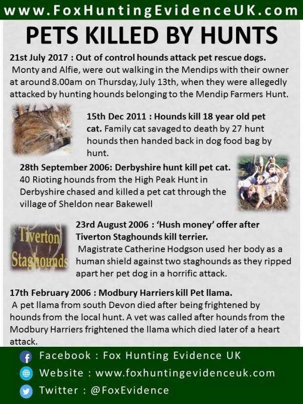 hunts-killing-pets