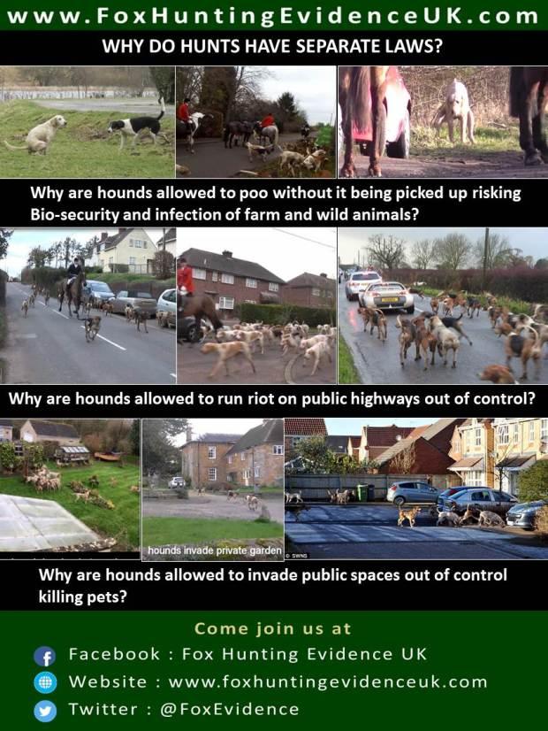 Poster-hunts-seperate-laws-sian
