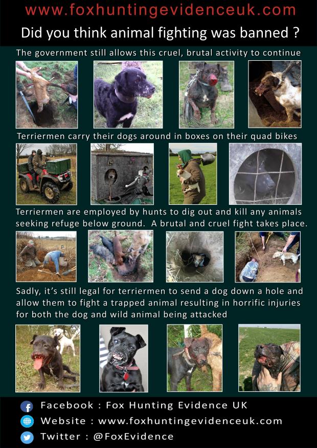 terriermen-poster