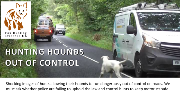 opening-header-hounds-on-roads
