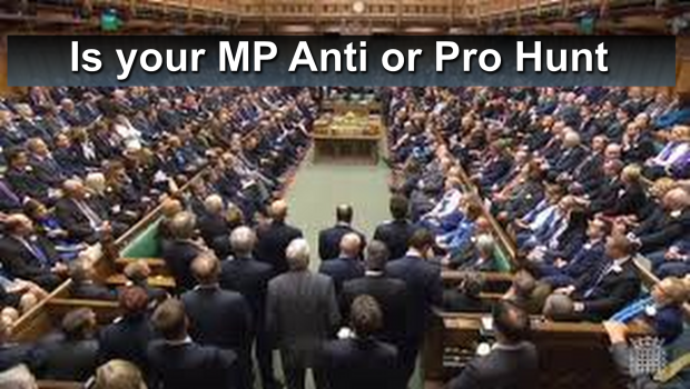 Is your MP Anti or Pro Hunt banner