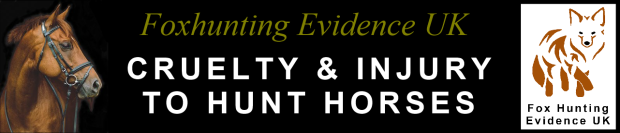 Title banner - Cruelty and injury to hunt horses