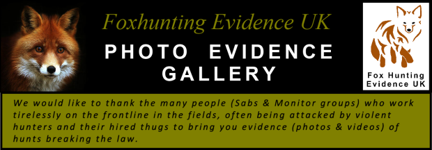 Title banner - Photo Evidence Gallery - Credit