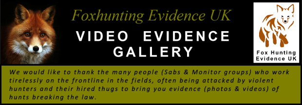 Title banner - Video Evidence Gallery