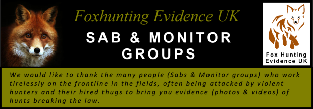 Title banner - Sab and Monitor Groups