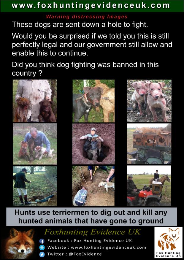 Terriermen Poster 002