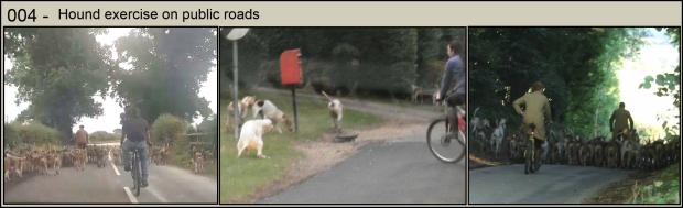 Hound exercise 004