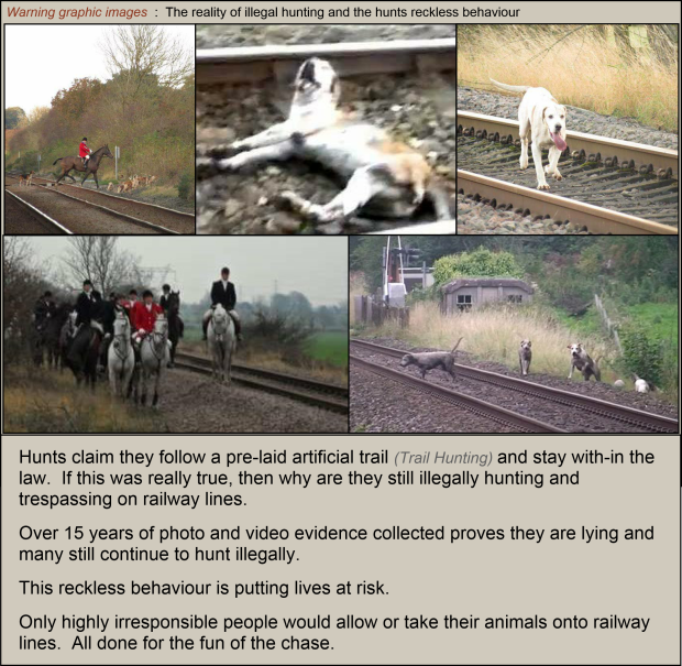 Hounds killed on railway lines 002