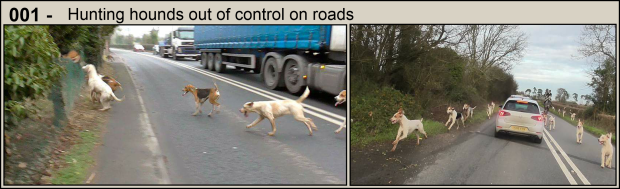 Hounds on roads - Part 1