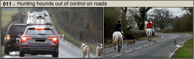 Hounds on roads - Part 11