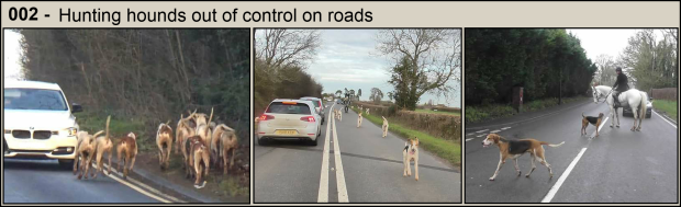 Hounds on roads - Part 2
