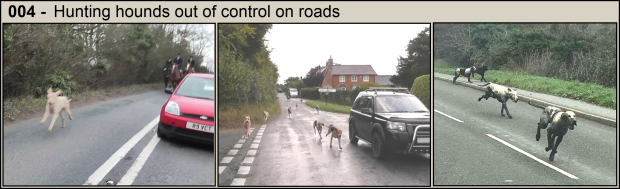 Hounds on roads - Part 4