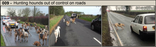 Hounds on roads - Part 9