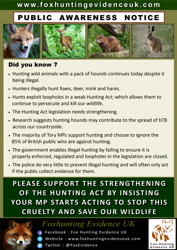 Hunting - Did you know