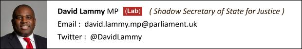 David Lammy Contact