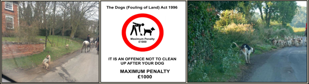 Hounds fouling 004b