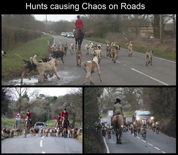 Hunts causing chaos on roads - Banner 001