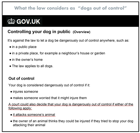 Dogs out of control - The Law 002